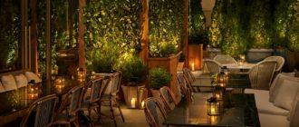 Бизнес-идея ресторан в виде летнего сада — идея оригинальная