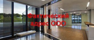 Фактическим адресом считается головной офис ООО