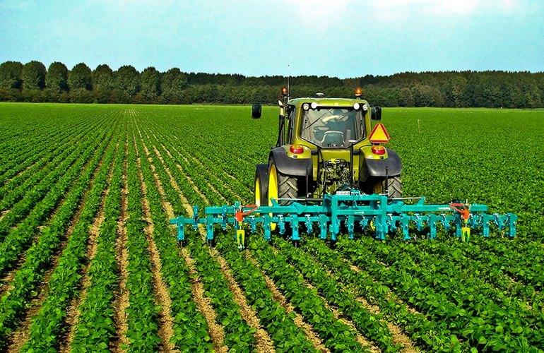 Плюсом в растениеводстве является безотходное производство